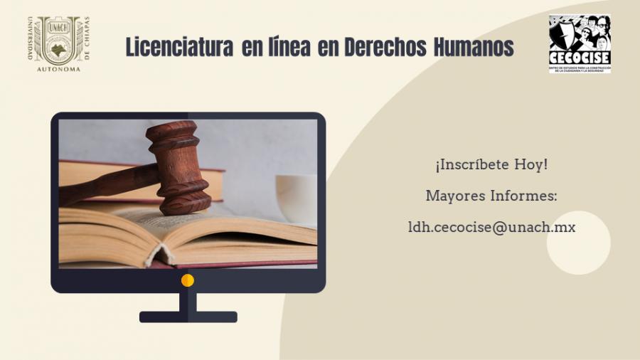 Licenciatura en línea en Derechos Humanos